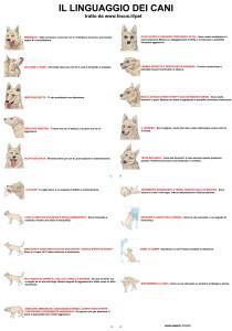 Linguaggio del corpo dei Cani