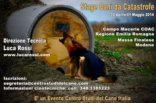 stage cani da catastrofe