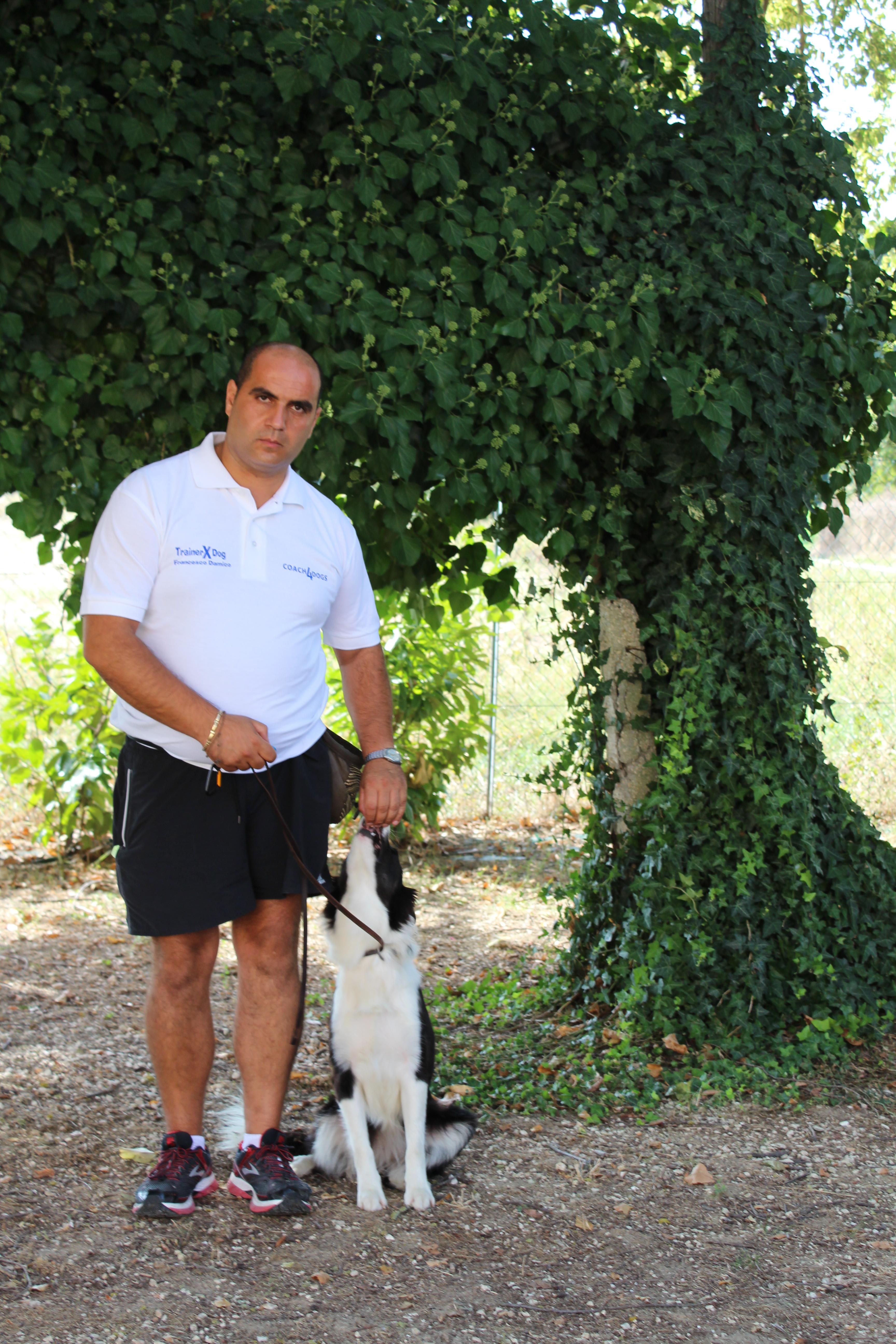 Educatore addestratore e Istruttore Cinofilo Francesco Damico Campo Cinofilo Dog School Barletta IMG_5976
